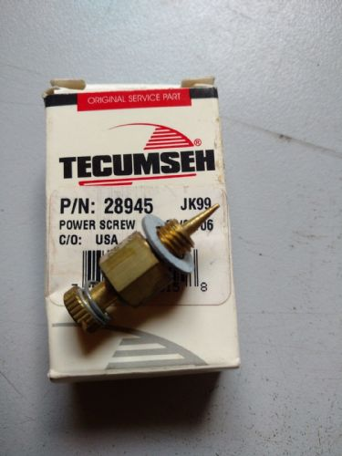 Tecumseh 28945 Carb power screw